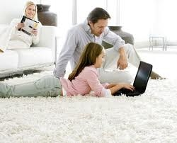 Paradise Carpet Cleaning - Kennett Square, PA