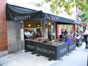 Cafe Blossom - New York, NY