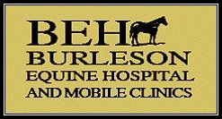 Burleson Equine Hospital & Mobile Emergency Service - Burleson, TX