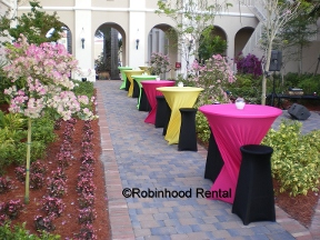 Robinhood Rental-Party Place - Hollywood, FL