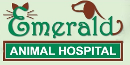 Emerald Animal Hospital - Cleveland, OH