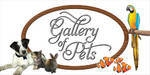Gallery Of Pets - Austin, TX