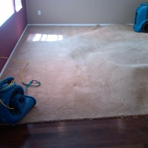 Empire Rug Cleaning - Sherman Oaks, CA