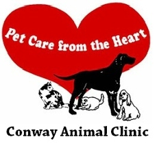 Conway Animal Clinic - Conway, AR