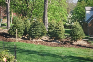 Symanski Landscaping and Supply, Inc. - Mars, PA