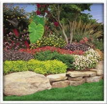 Do-it-Yourself Landscaping - Mountlake Terrace, WA