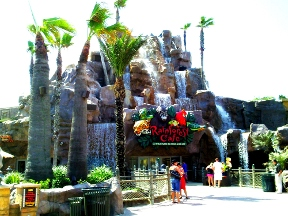 Rainforest Cafe - Galveston, TX