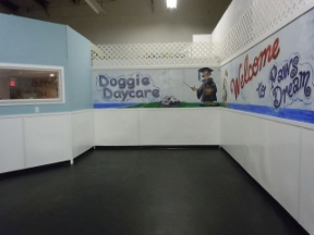 Paws Dream Doggie Day Care - Yarmouth Port, MA