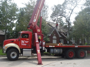 Champions Tree Preservation - Houston, TX