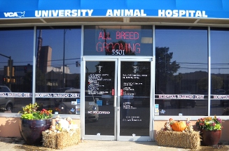 Vca University Animal Hospital - Dallas, TX