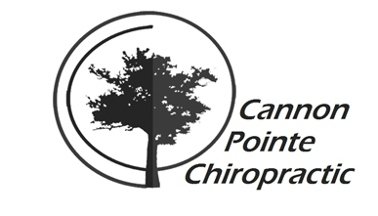 Cannon Pointe Chiropractic - Northfield, MN