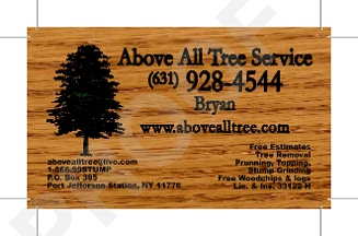 Above All Landscaping & Tree Service - East Setauket, NY