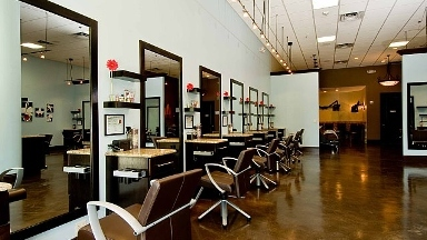 Dolce Vita Salon