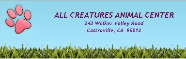 All Creatures Animal Center - Castroville, CA