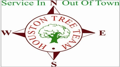 Houston Tree Team