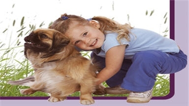 Aborn Pet Clinic - San Jose, CA