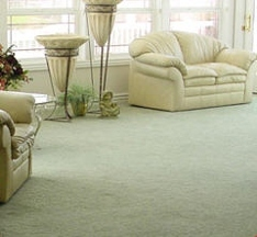 Heaven's Best Carpet Cleaning - Fort Worth, TX