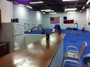Dog City Training Ctr