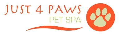 just 4 paws pet spa in lyndhurst nj 07071 citysearch