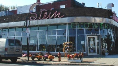Stein Your Florist Co. - Philadelphia, PA