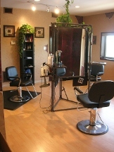 The LOFT Hair Studio