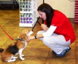 Central Texas Animal Hospital - Pflugerville, TX