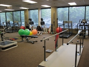 Bodywise Physical Therapy And Acupuncture - Columbia, MD