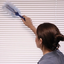 C and H Cleaning Services - - Mesquite, TX