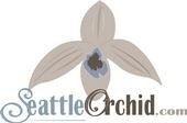 Seattle Orchid