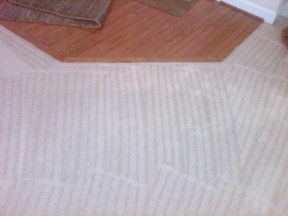 My Carpet Cleaning Service - Silver Spring, MD