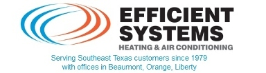Efficient Systems Inc.