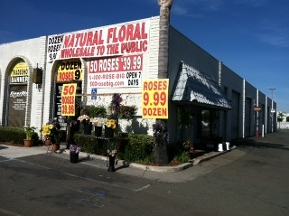 Natural Floral Wholesale