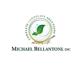 Michael Bellantoni INC - White Plains, NY