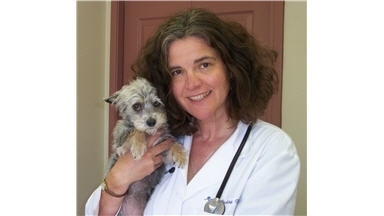 San Leandro Good Samaritan Veterinary Hospital - San Leandro, CA