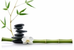massage in norristown pa