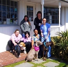 Blue Point-Bayport Animal Hospital - Bayport, NY