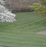 West Choice Lawn Care - Candler, NC