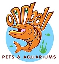 Oddball Pets & Aquariums - Pittsburgh, PA