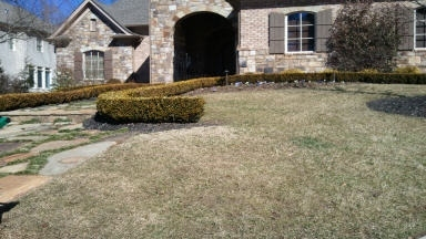 Grasshopper Landscaping - Decatur, GA