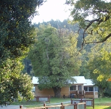 Coho Cottages - Willow Creek, CA