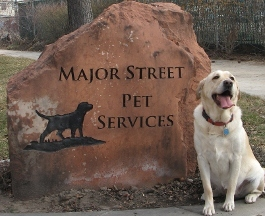 Major Street Pet Services