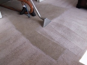 Mccall's Carpet Cleaning