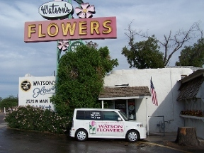 Watson Flower Shops