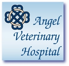 Engel, Cindy, DVM Angel Veterinary Hospital - Santa Barbara, CA