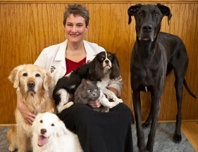 The Downing Center For Animal Pain Management, LLC - Windsor, CO