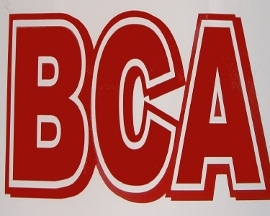 Bca Billiards