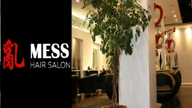 Mess Hair Salon