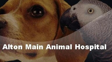Alton Main Animal Hospital INC