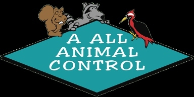 A All Animal Control of Puget Sound