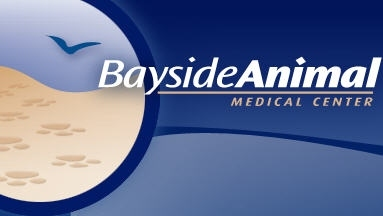 Bayside Animal Medical Center - Severna Park, MD